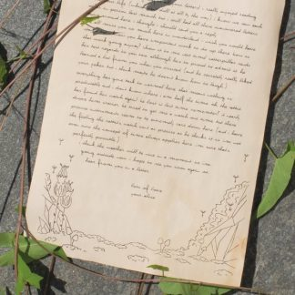 Plants and rocks aged stationery writing paper - overlook image
