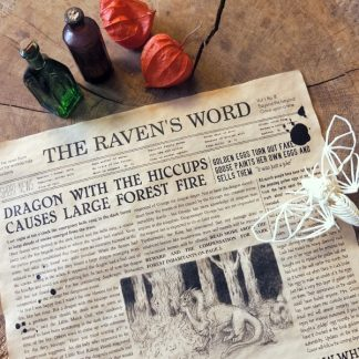 The Raven's Word 1st Edition - Main image